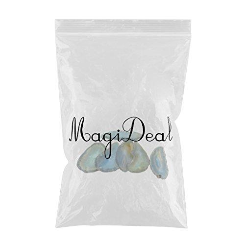 MagiDeal 6er Set Natürliche Achatscheiben gefärbte Achat Scheiben Poliert für DIY Schmuck Tischdeko - Aquamarinblau - 2