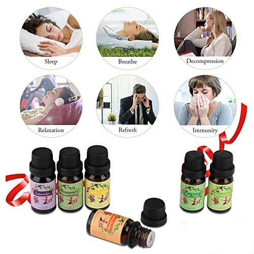 Ätherische Öle Set,6 x 10 ml Aromatherapie Duftöl 100% Pure Ätherische Öle Geschenk für Diffuser- Orange, Lavendel, Teebaum, Zitrone, Eukalyptus und Pfefferminze - 4