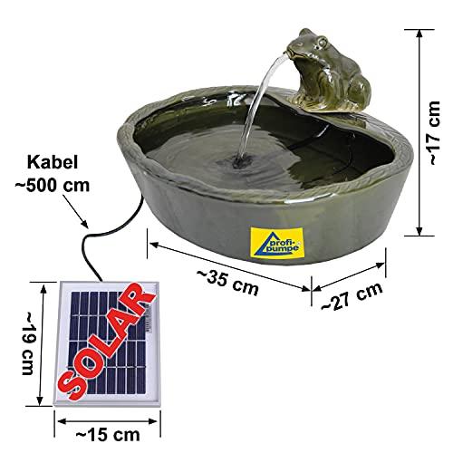 AMUR GARTENBRUNNEN SOLAR BRUNNEN SOLARTEICHPUMPE SOLAR SPRINGBRUNNEN SOLAR WASSERSPIEL FROSCHPARADIES ZIERBRUNNEN Frosch VOGELBAD SOLAR Pumpe Solar Teichpumpe SOLAR Set für Garten Teich TERRASSE - 2